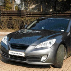 ARTX HYUNDAI GENESIS COUPE - EAGLES RADIATOR TUNING GRILLE (5 COLORS)
