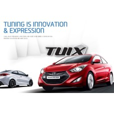 TUIX FULL KIT AERO TUNING BODY FOR HYUNDAI AVANTE / ELANTRA COUPE 2013-15 MNR