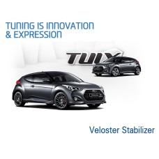 TUIX DYNAMIC PACK STABILIZER BAR FOR HYUNDAI VELOSTER 2011-17 MNR